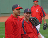 MDC and Pedroia